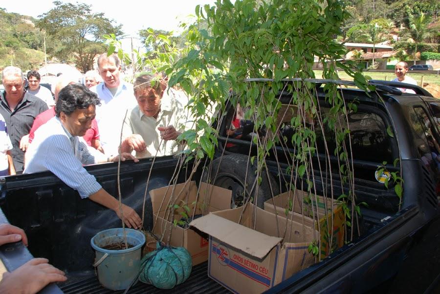 Teresópolis comemora o Dia da Árvore com plantio de mudas nativas e cerejeiras