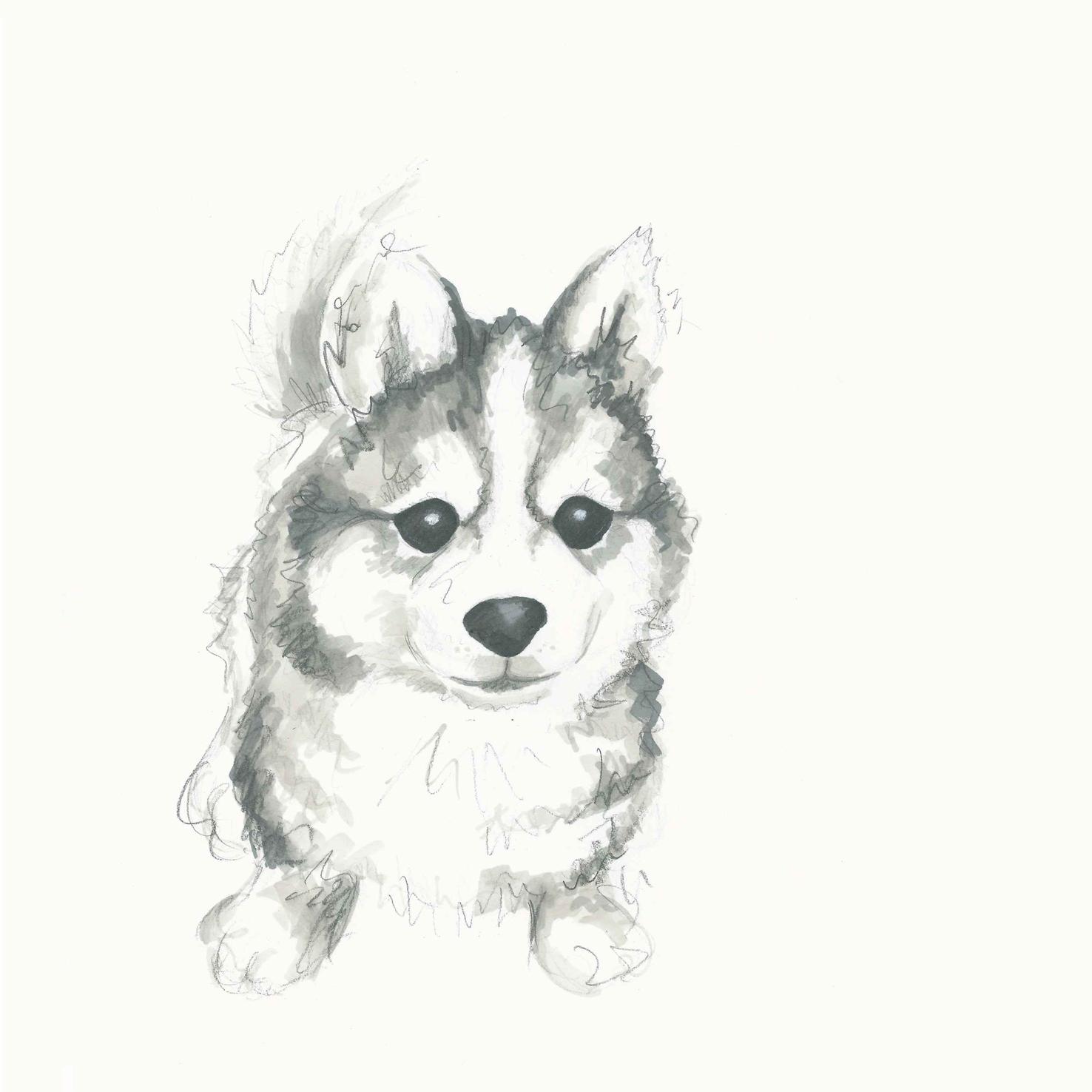 easy cute cartoon puppy drawing