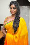 Jayavani glam pics in saree-thumbnail-18