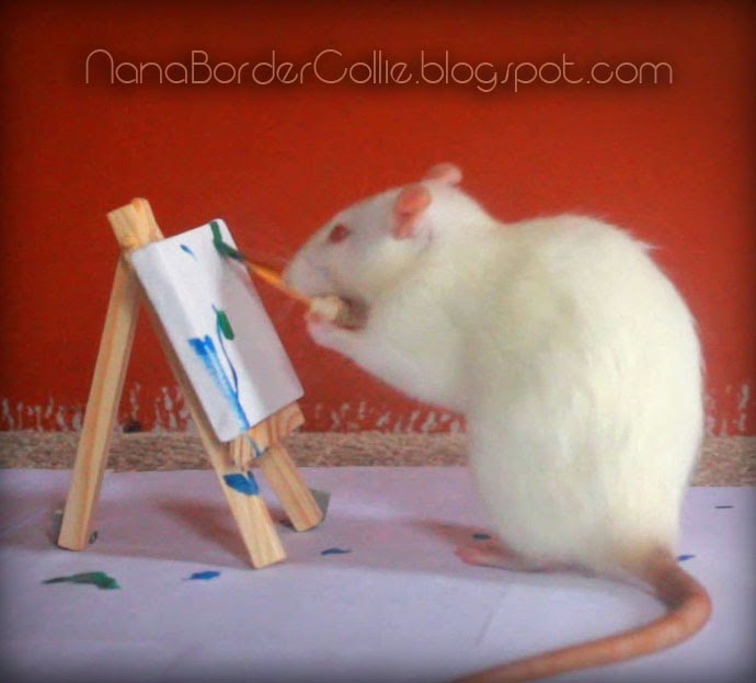Amazing Animal Tricks: Epic Rat Tricks