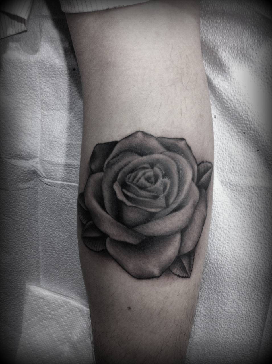 Tattoos by logan howard for Black and gray rose tattoos