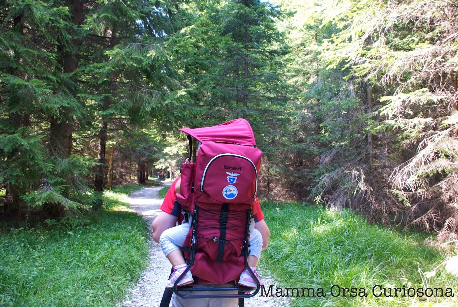 CAI, montagna, camminare