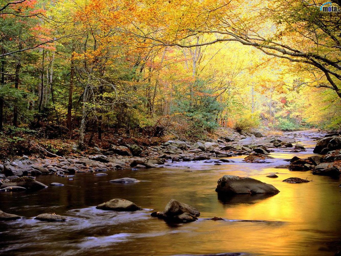 http://2.bp.blogspot.com/-NDCIBzUBbMQ/UAEfp_DlxSI/AAAAAAAAWfk/6GUiTAFbJdg/s1600/2012+Spring+Nature+nature+hd+desktop+wallpaper.jpg