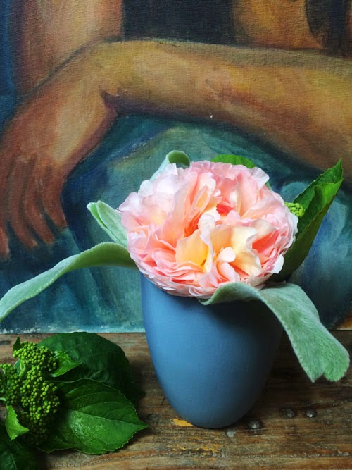 abraham derby rose via small acorns blog