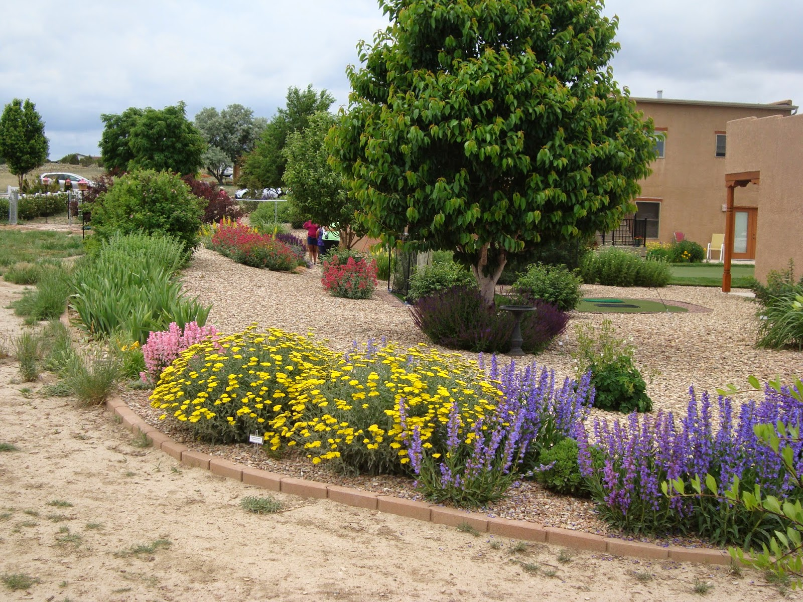 Xeriscape pictures excellent xeriscape round rock texas for Gardening zones colorado