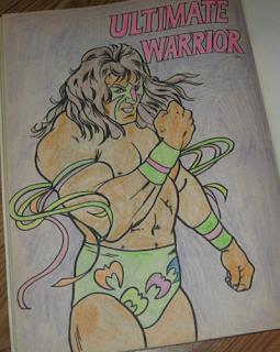 J S Wrestling Memorabilia The COLORful World Of 1991 WWF