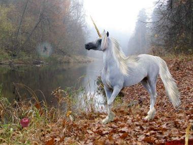 LolEscape Autumn Forest Escape