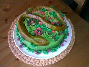 Hadí dort