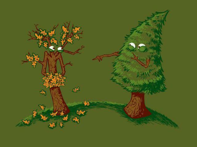 Piada - bullying - com árvores