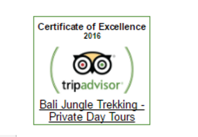 Top Best Trekking in Bali