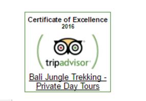 Top Best Trekking in Bali