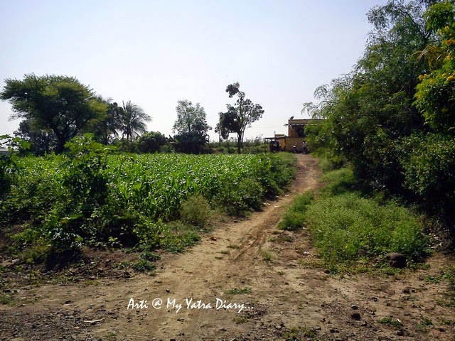 Fields and muddy tracks on the Pune-Saswad Dive Ghat Highway