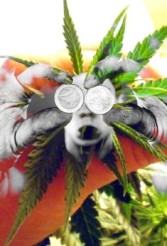 marihuana y dinero