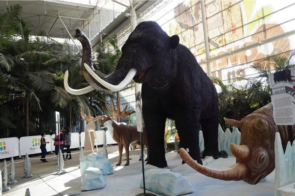 Exhibición-interactiva-evolución-hombre-toma-Bogotá