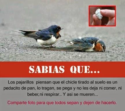 SABIAS QUE......