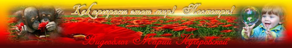 Видеоблог онлайн от МАРИИ КУЧЕРОВСКОЙ!