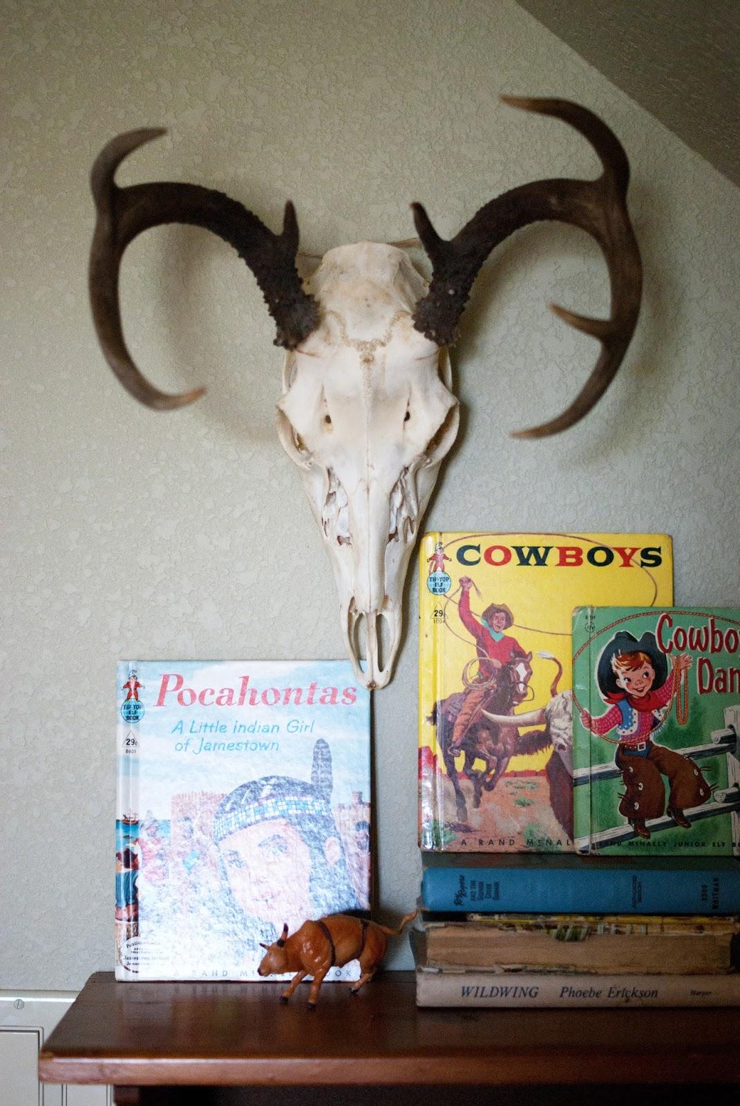Western children books and deer skull