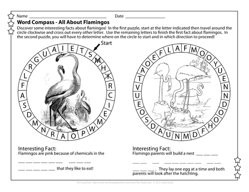 Flamingo Word Compass from The Puzzle Den