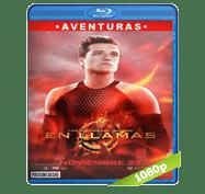 Los Juegos del Hambre 2: En Llamas (2013) Full HD BRRip 1080p Audio Dual Latino/Ingles 5.1