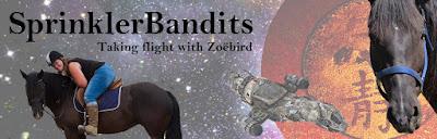 SprinklerBandits
