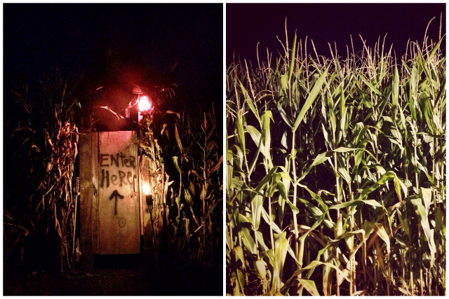 Gaines Farm Haunted Corn Maze Guilford Vermont