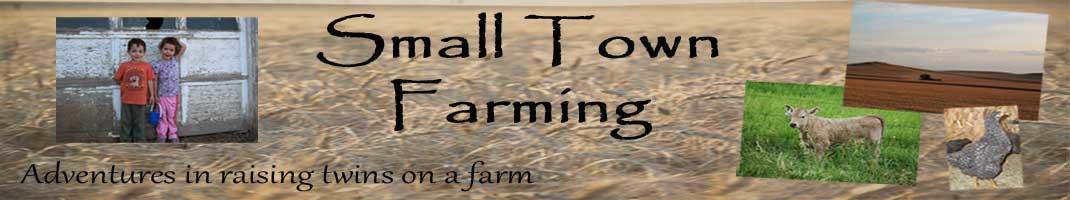 Small Town Farming