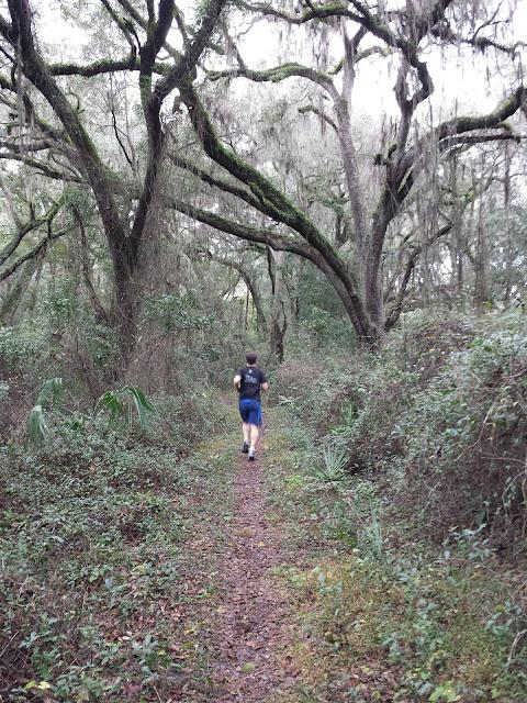 Early  Morning Run - Florida Trail