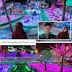 [Hyde, Jekyll & I/하이드지킬나] The Illuminated Flower Garden