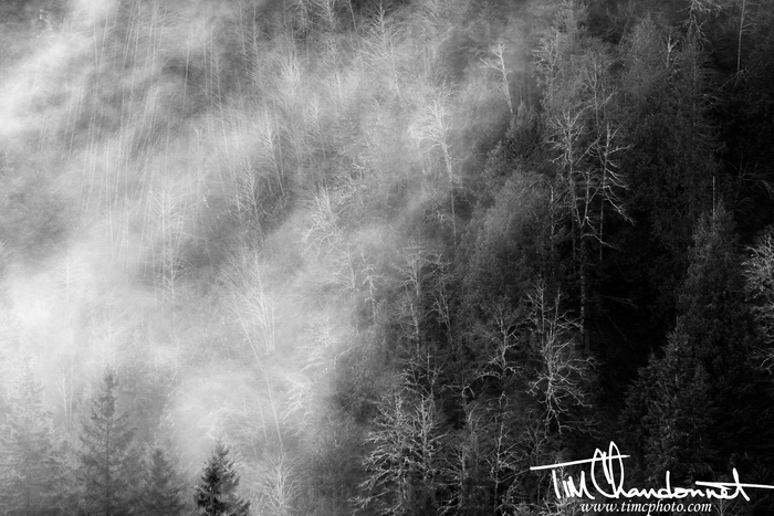 Tim Chandonnet Photography- Foggy North Cascade Mountains, Pacific Northwest Landscape Photography