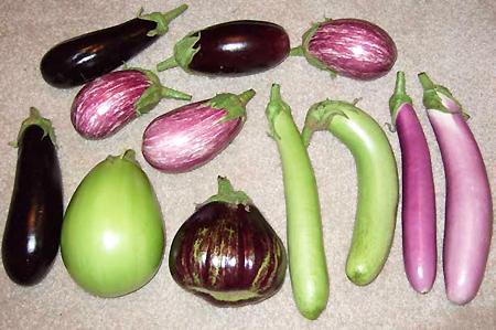 nat rlich gesund aubergine vielseitig mit wertvollen inhaltsstoffen. Black Bedroom Furniture Sets. Home Design Ideas