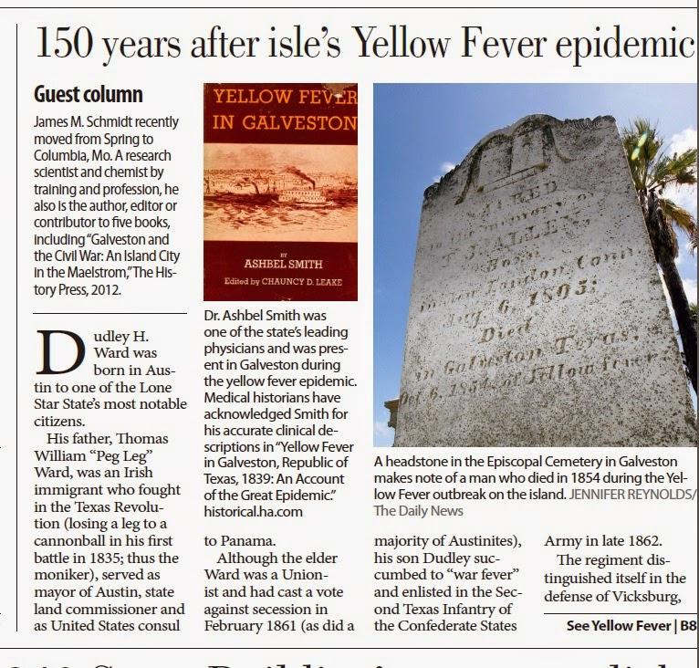 Yellow Fever - Essay Example