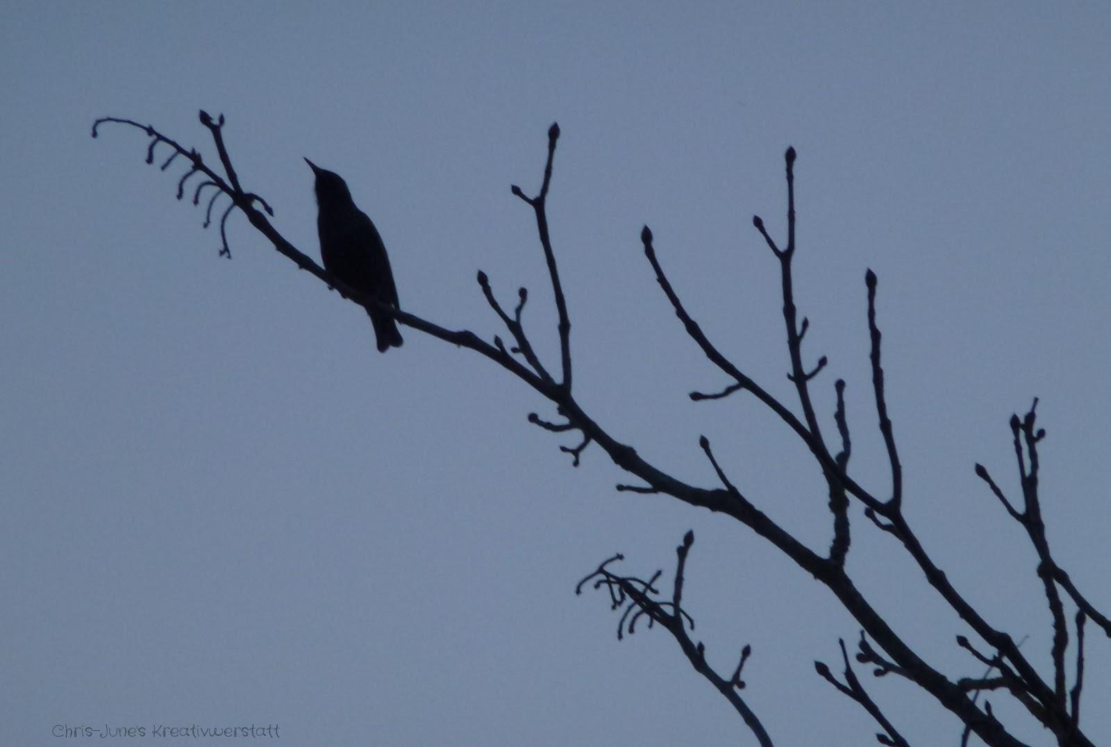 Vogel auf Zweig - Scherenschnitt