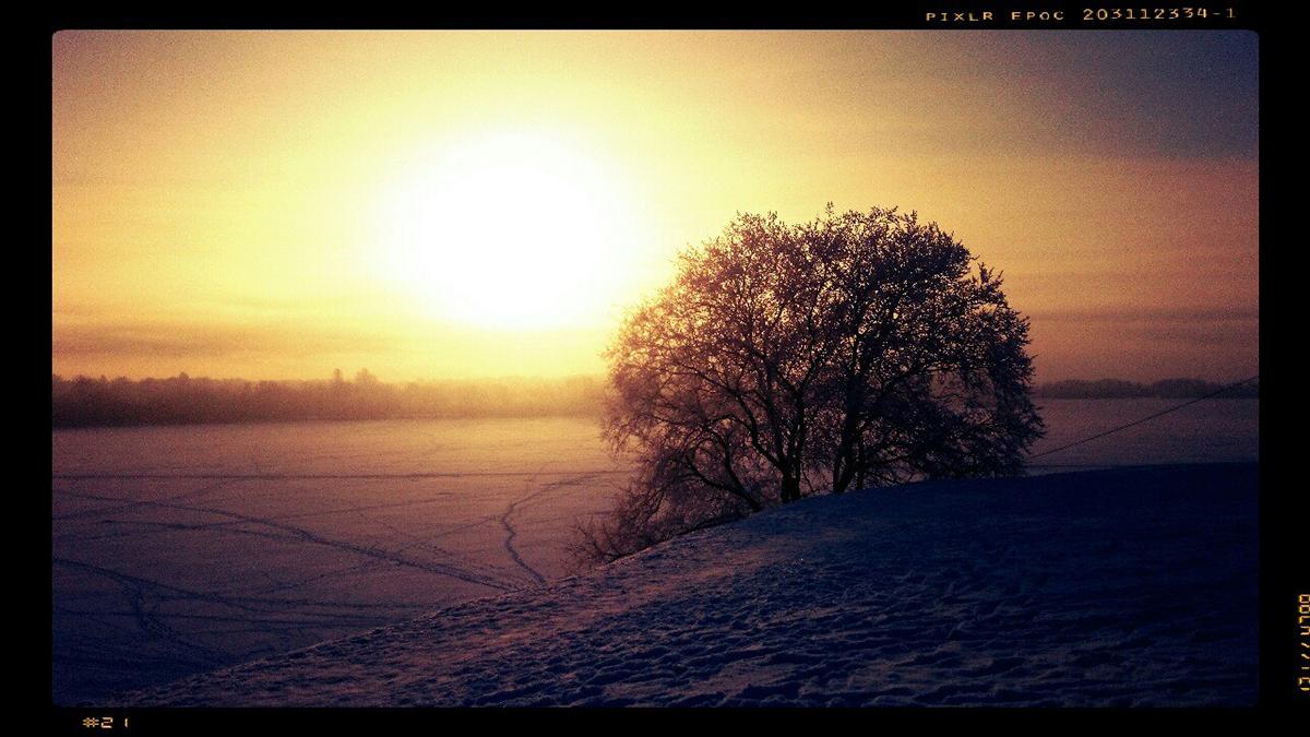 Крюков, пейзаж, зима, фотошкола, Солотин