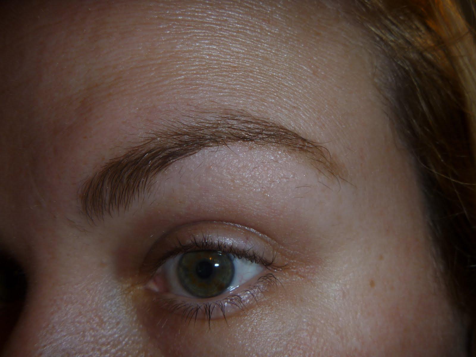 Glitter N Glam Makeup By Chrissy Nyx Eyebrow Cake Powder