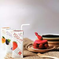 manfaat yoghurt hevanely blush