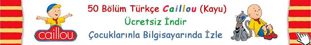 50 Bölüm Türkçe Caillou (Kayu)  Ücretsiz İndir Çocuklarınla Bilgisayarında İzle