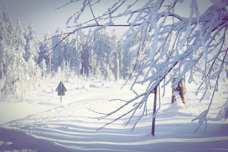 just like life es schneit es schneit kommt alle aus. Black Bedroom Furniture Sets. Home Design Ideas