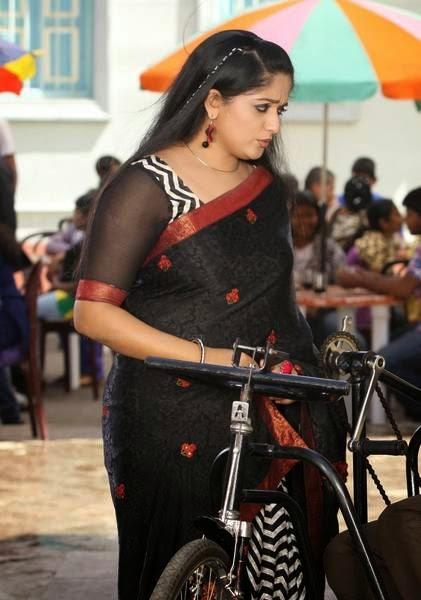 Kavya Madhavan Sexy Hot Saree Photos
