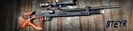 Steyr