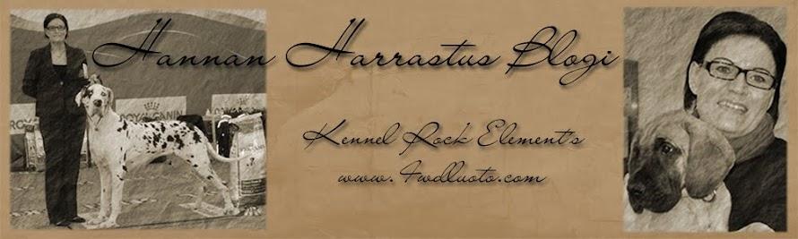 Hannan Harrastus Blogi