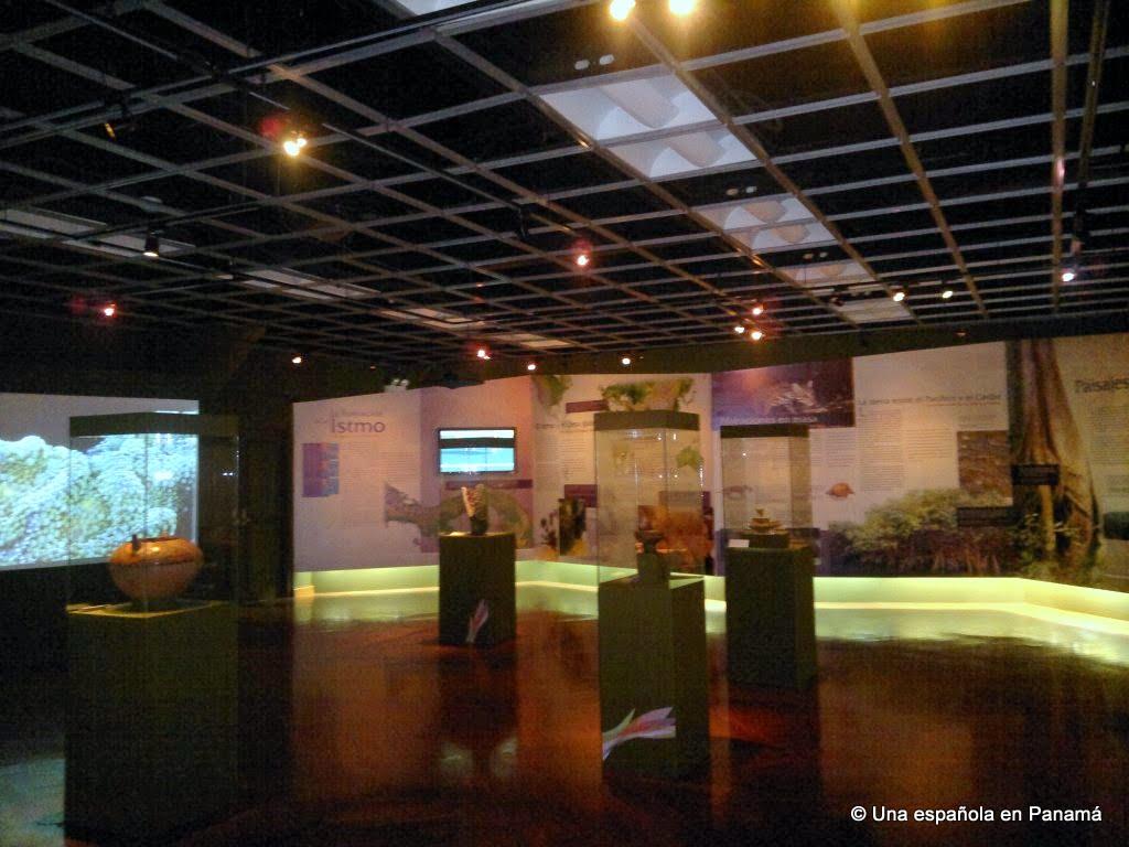 casco viejo museo canal panama