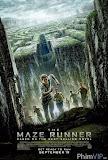 Giải Mã Mê Cung - The Maze Runner poster