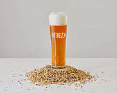 Hefeweizen 1 Gallon Beer Brewing Recipe Kit