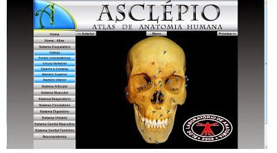 ATLAS DE ANATOMIA ONLINE