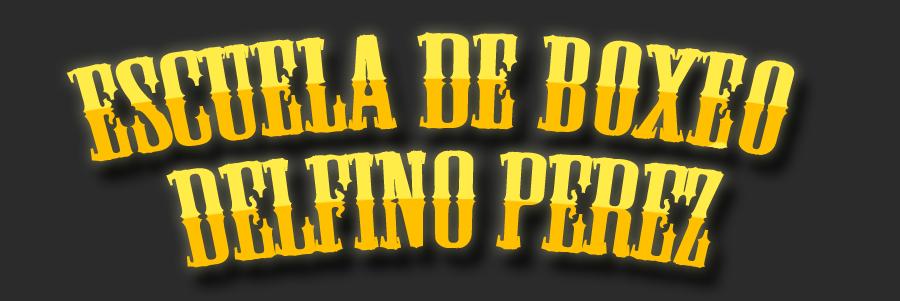 Escuela de Boxeo Delfino Pérez