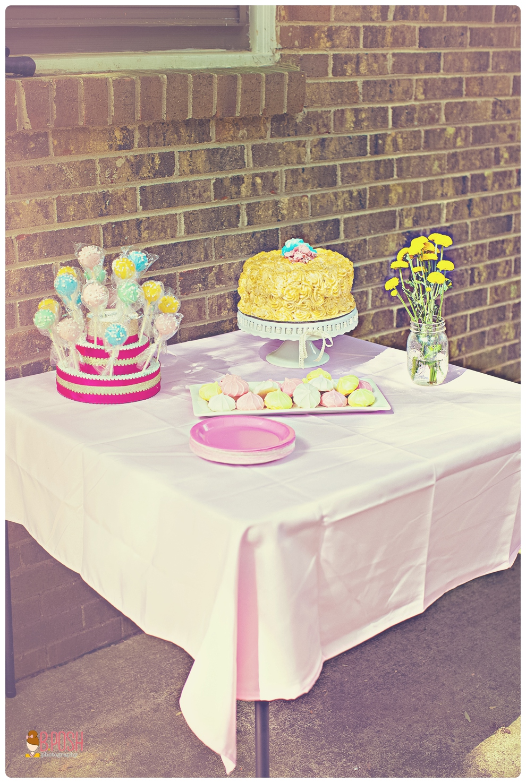 Cake Pop Trays Target