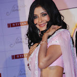 Nandana Sen Super Hot In Saree