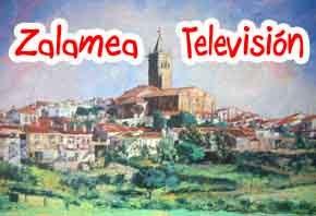 Zalamea Televisión