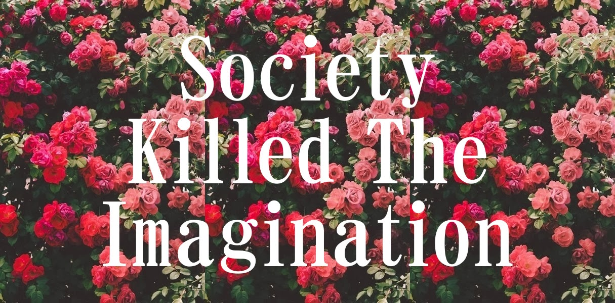 Society Killed The Imagination