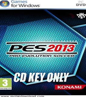 Pes 2013 cd key